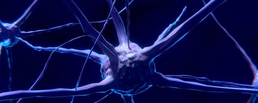 Neuronas Artificiales y la Enfermedad de Alzheimer.